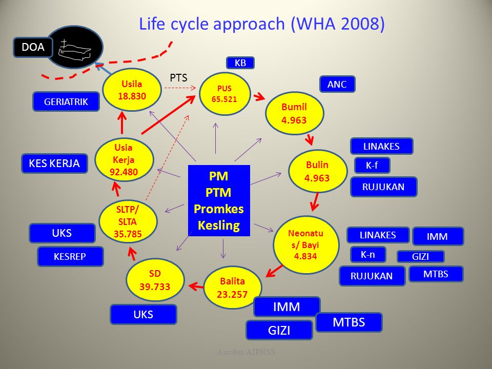 Life cycle approach (WHA 2008)