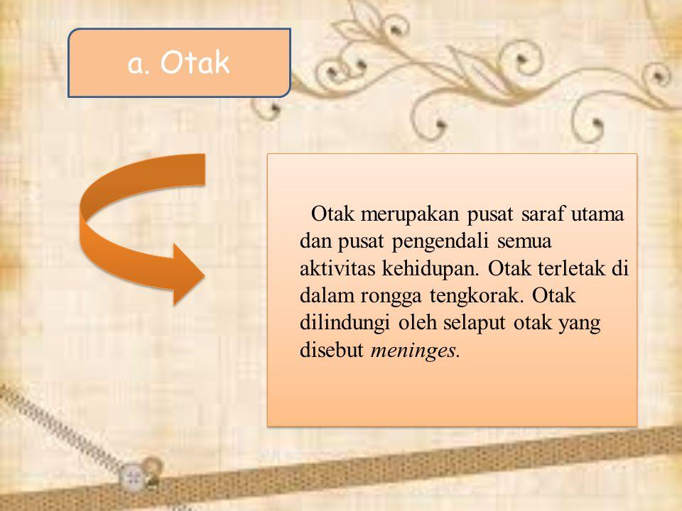 a. Otak