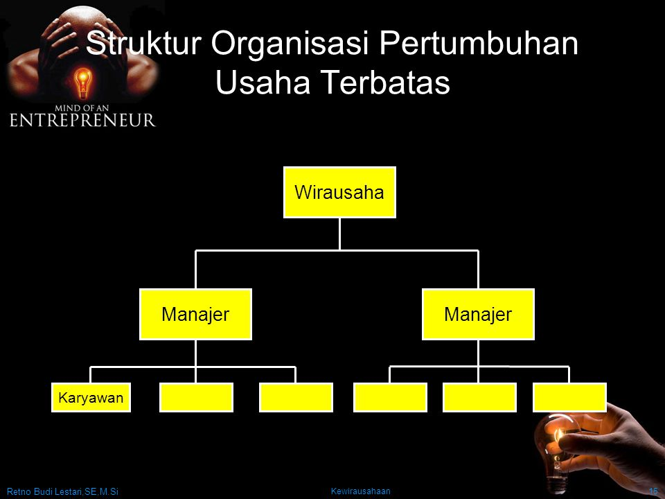 Struktur Organisasi Pertumbuhan Usaha Terbatas