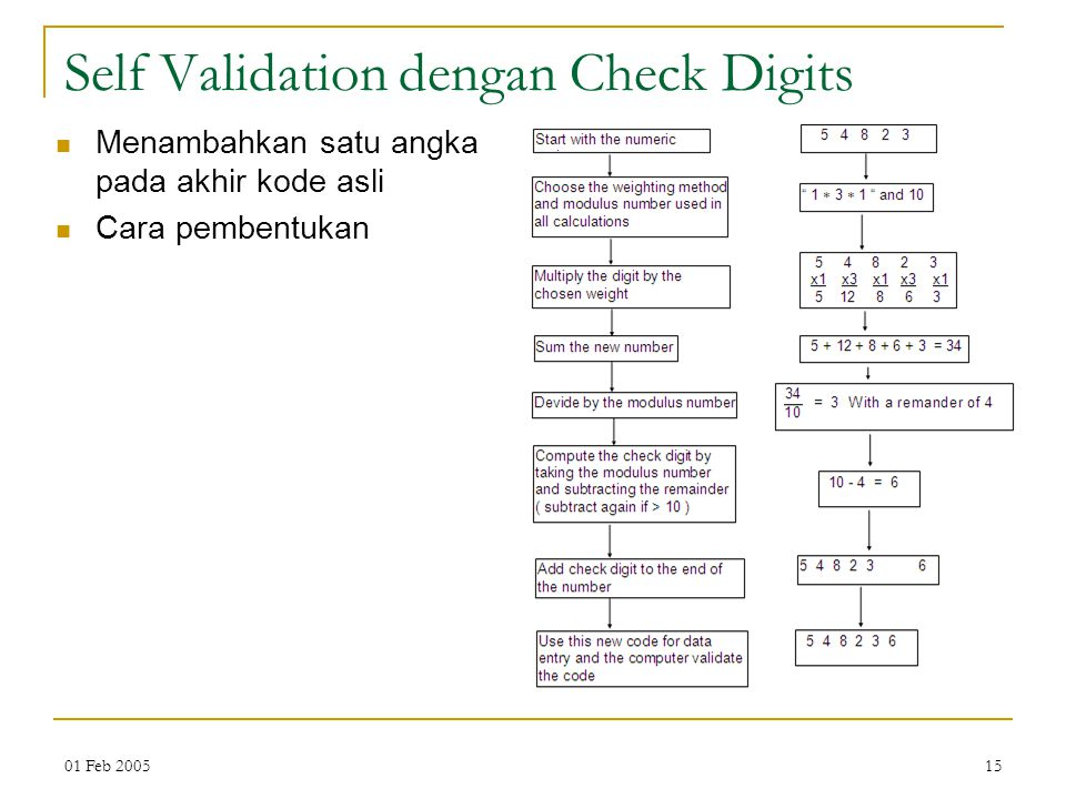 Self Validation dengan Check Digits