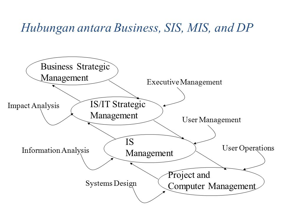 Hubungan antara Business, SIS, MIS, and DP