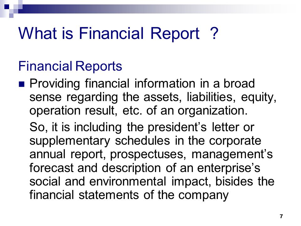 What is Financial Report
