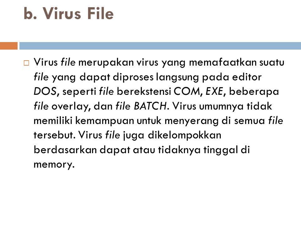 b. Virus File