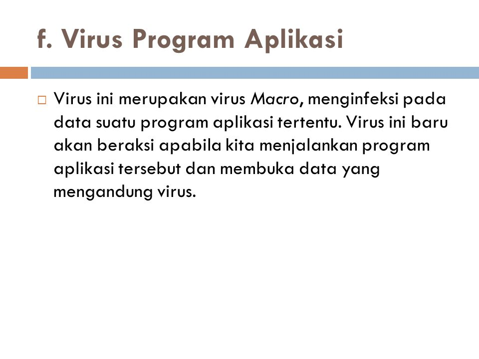 f. Virus Program Aplikasi