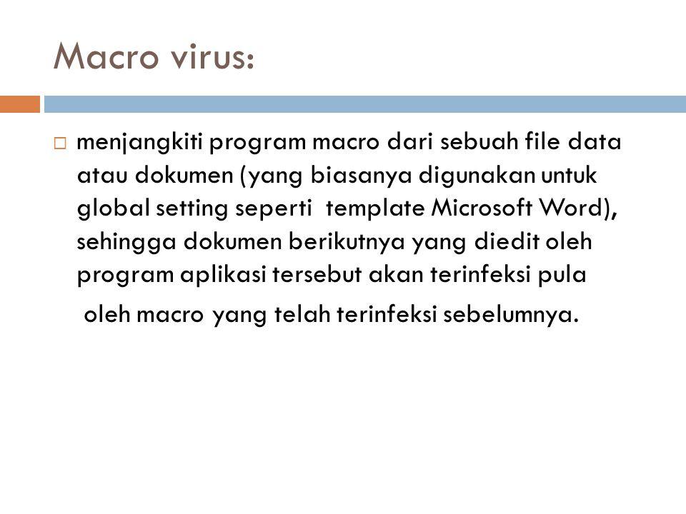 Macro virus: