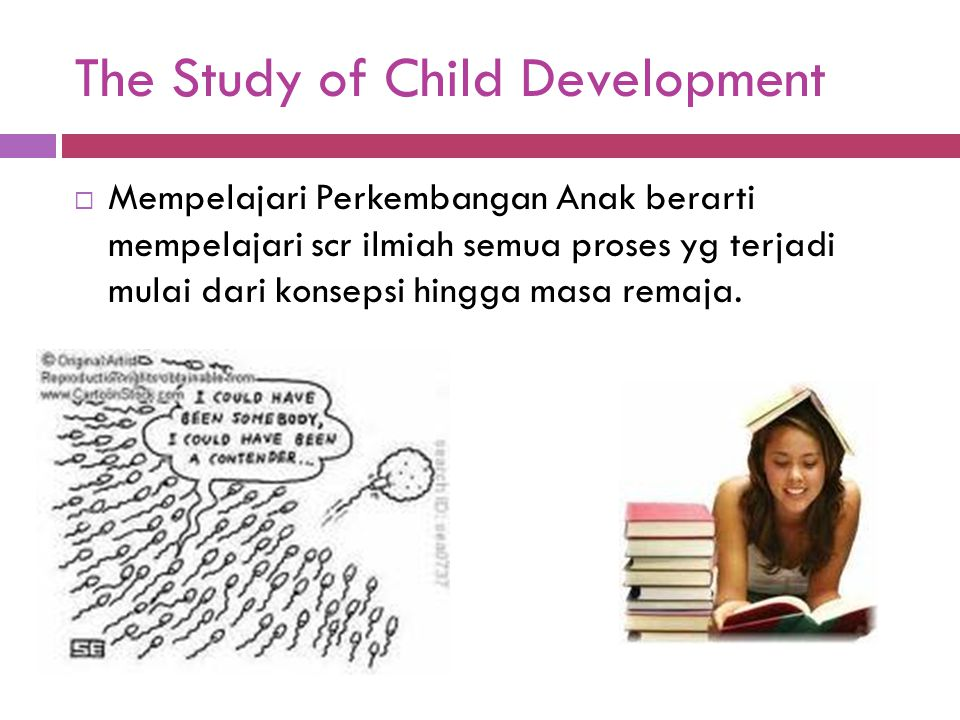 The Study of Child Development