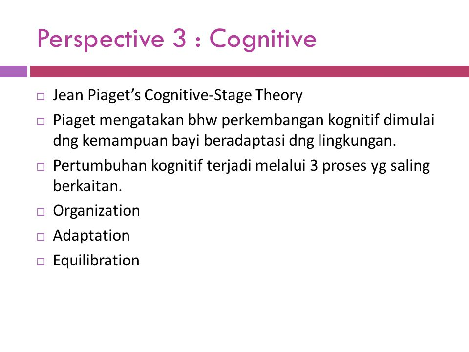 Perspective 3 : Cognitive