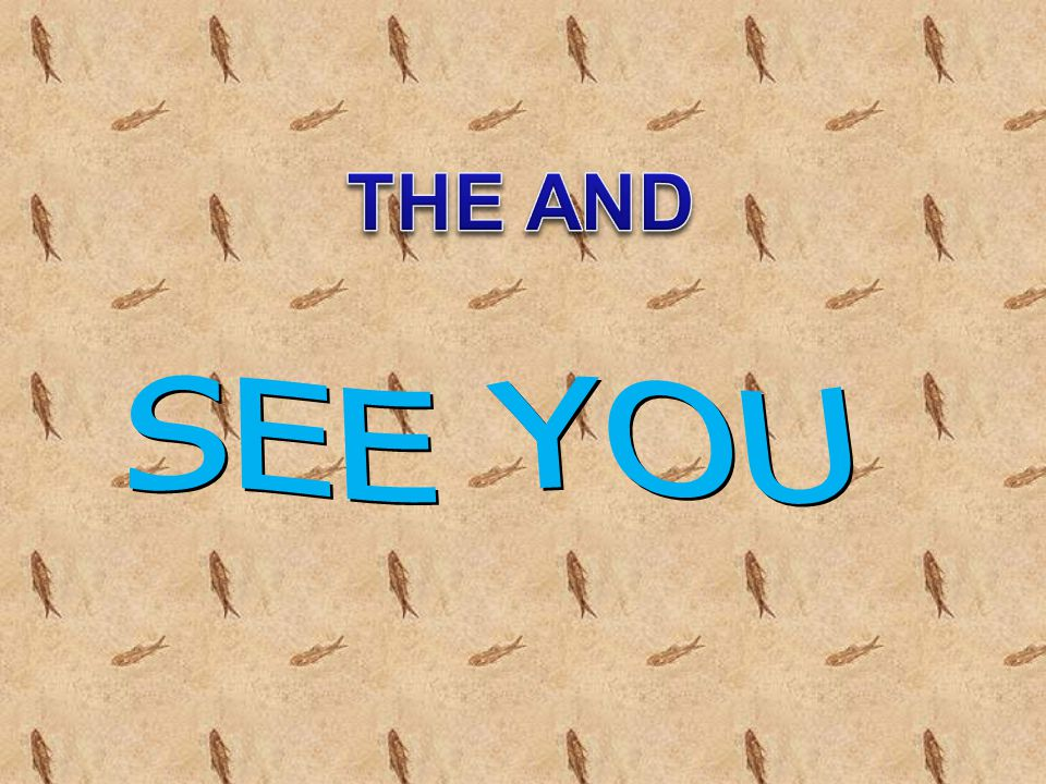 THE AND SEE YOU