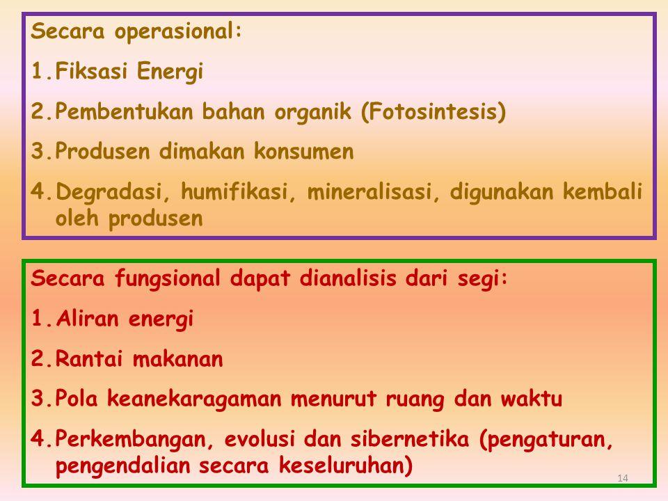 Secara operasional: Fiksasi Energi. Pembentukan bahan organik (Fotosintesis) Produsen dimakan konsumen.