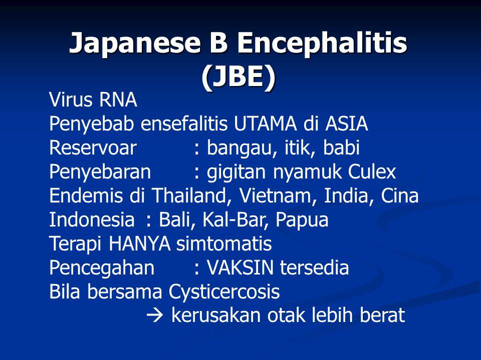Japanese B Encephalitis (JBE)