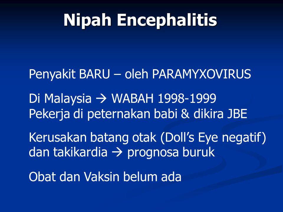 Nipah Encephalitis Penyakit BARU – oleh PARAMYXOVIRUS