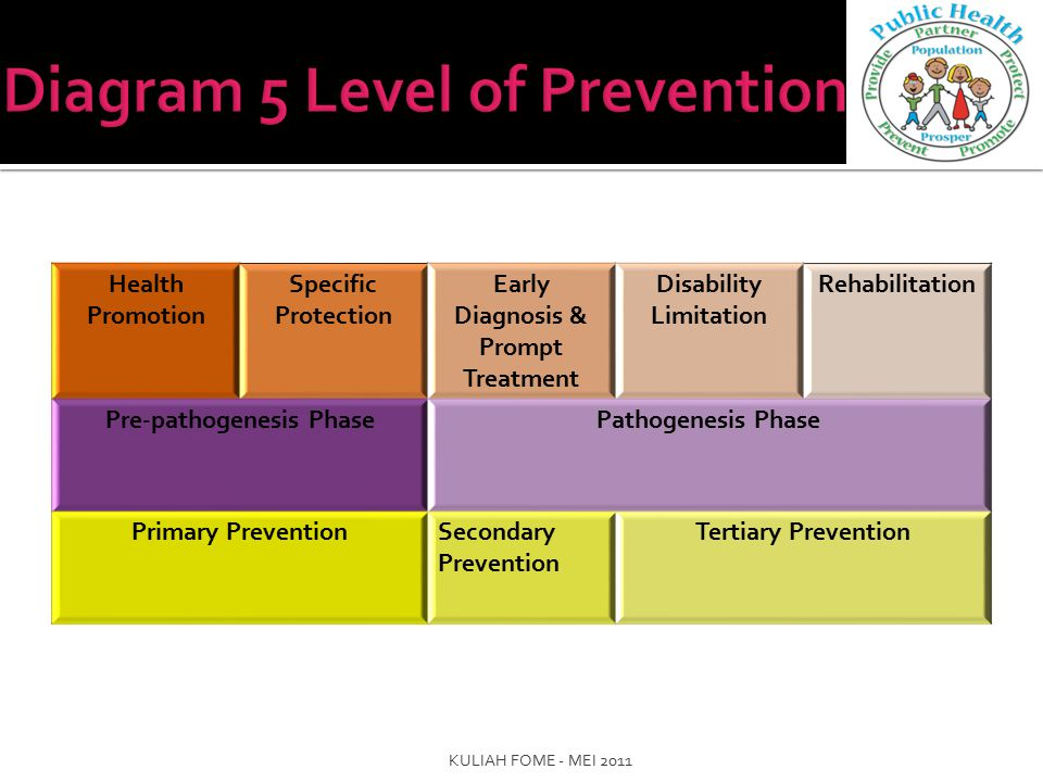 Diagram 5 Level of Prevention