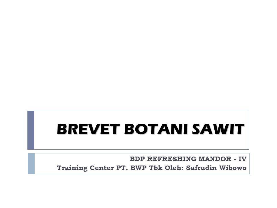 BREVET BOTANI SAWIT BDP REFRESHING MANDOR - IV