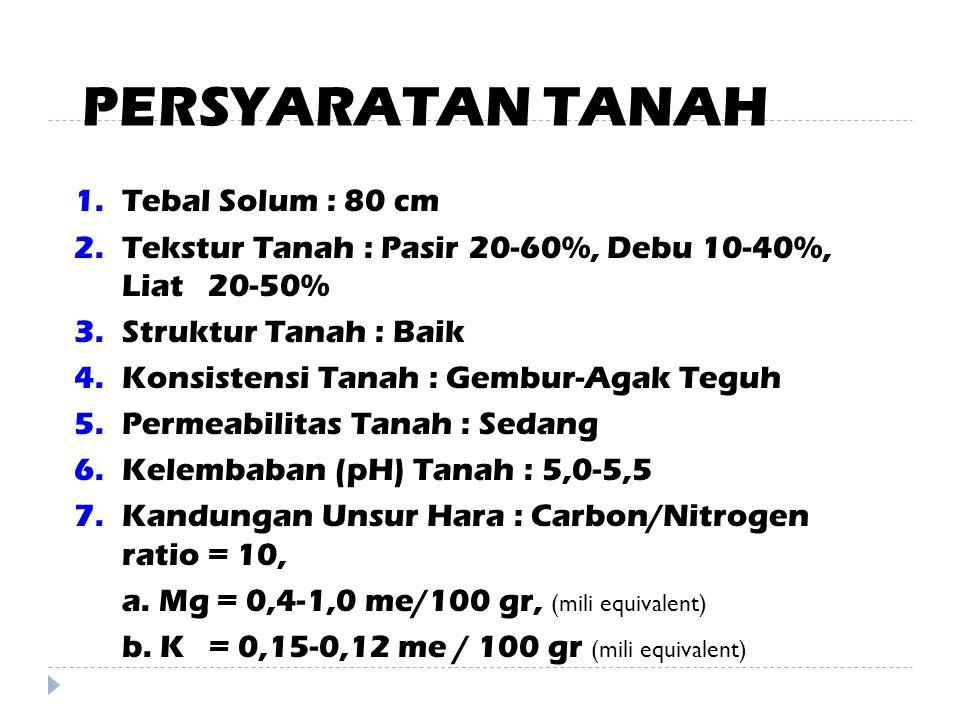 PERSYARATAN TANAH Tebal Solum : 80 cm