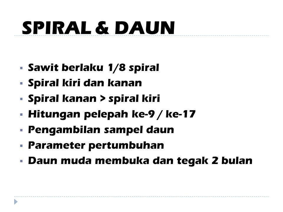 SPIRAL & DAUN Sawit berlaku 1/8 spiral Spiral kiri dan kanan