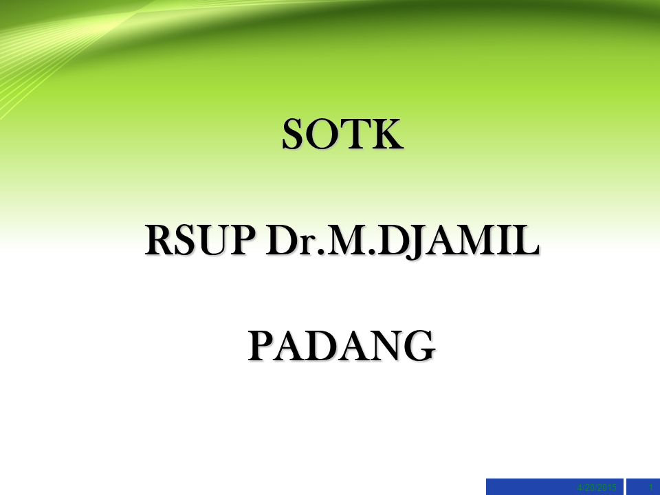 SOTK RSUP Dr.M.DJAMIL PADANG
