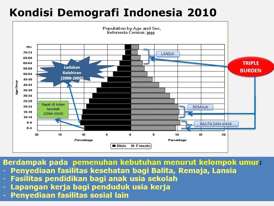 Kondisi Demografi Indonesia 2010