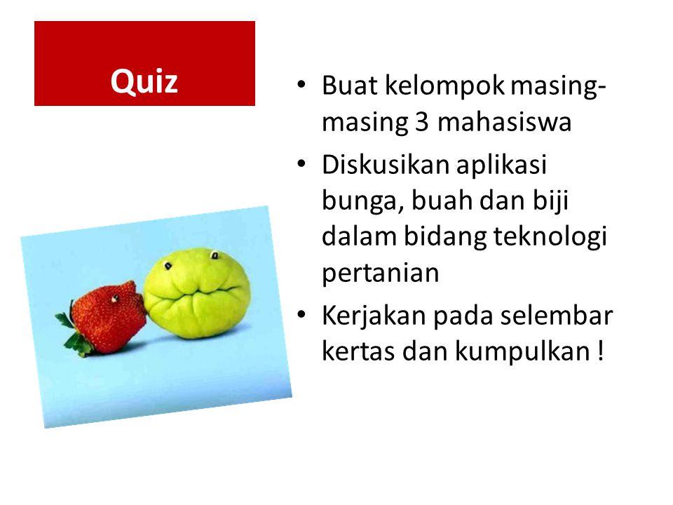 Quiz Buat kelompok masing-masing 3 mahasiswa
