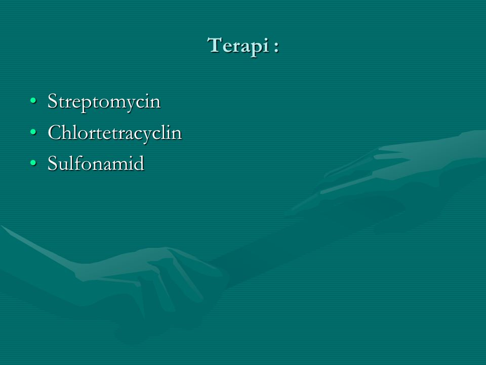 Terapi : Streptomycin Chlortetracyclin Sulfonamid