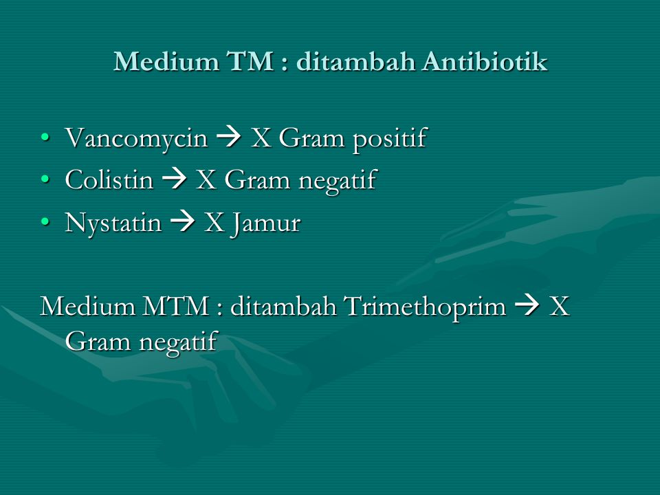 Medium TM : ditambah Antibiotik