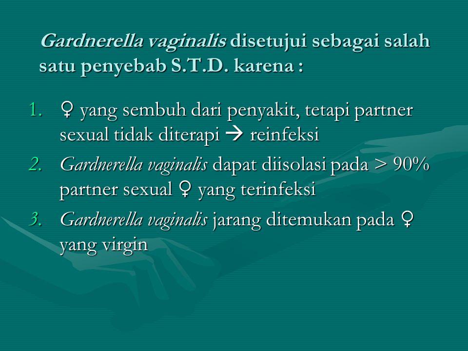 Gardnerella vaginalis disetujui sebagai salah satu penyebab S. T. D