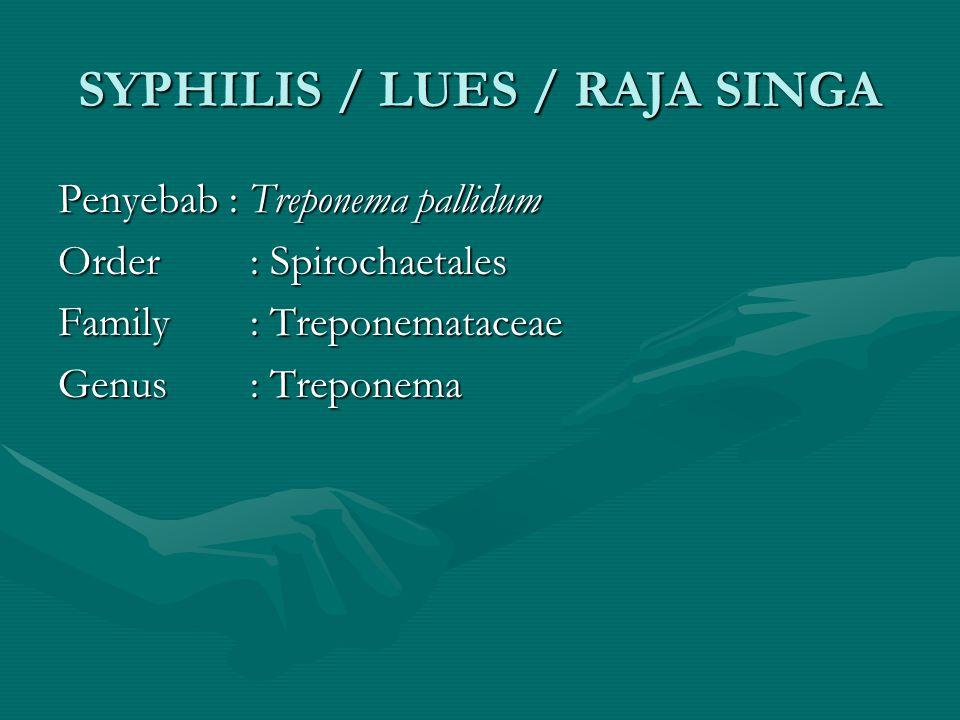 SYPHILIS / LUES / RAJA SINGA