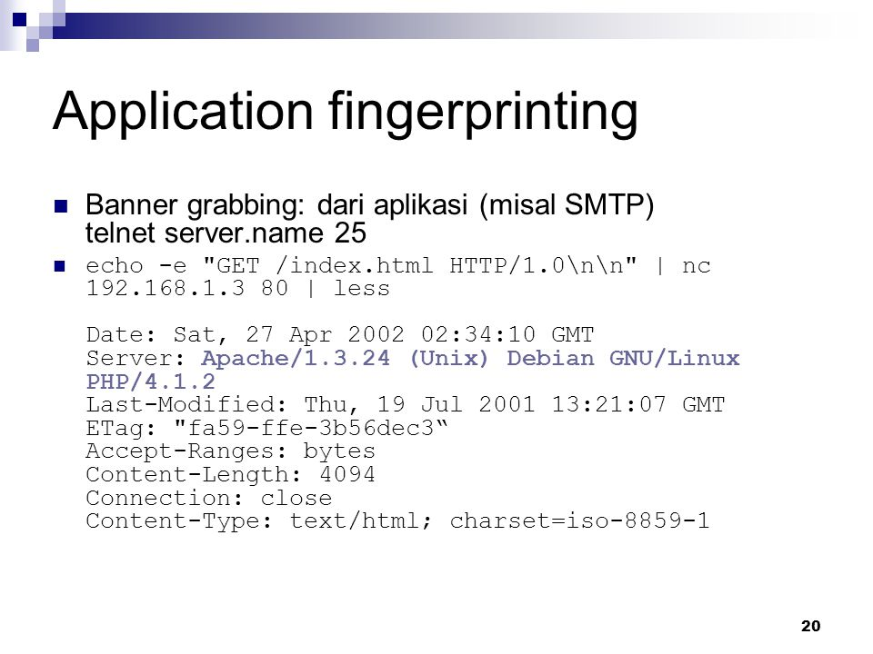 Application fingerprinting
