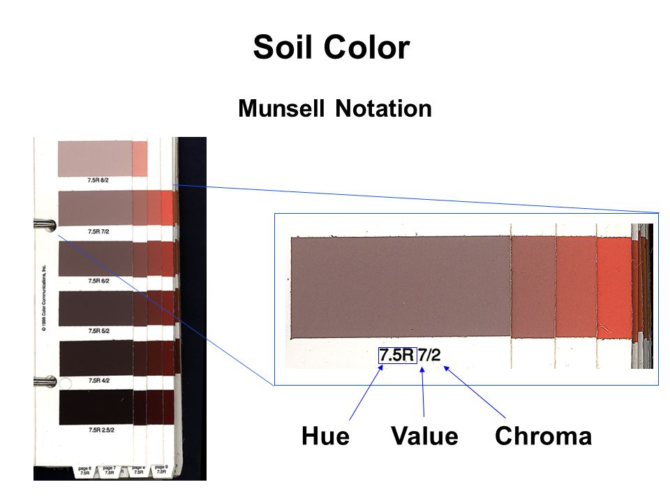 Soil Color Hue Value Chroma Munsell Notation