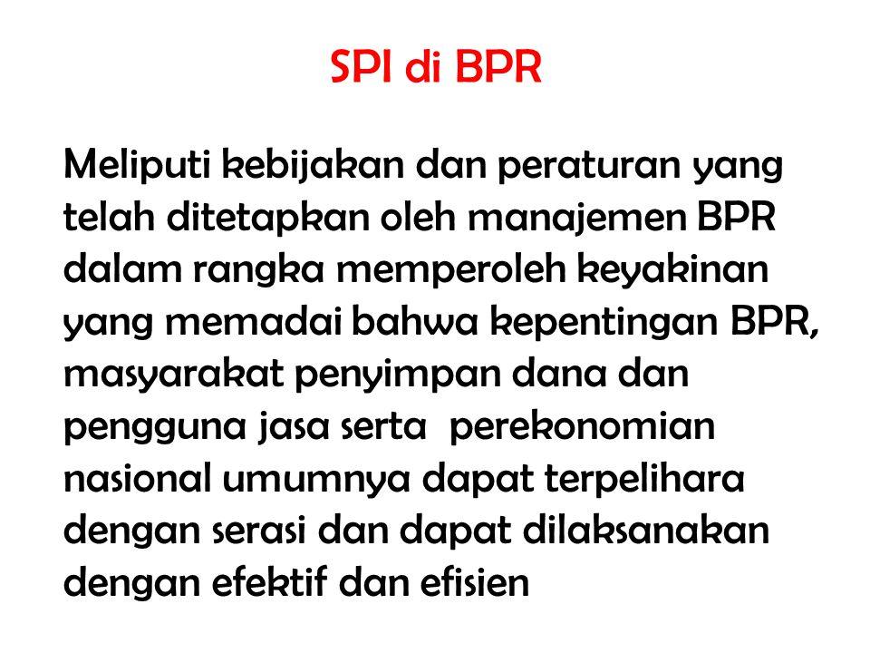 SPI di BPR