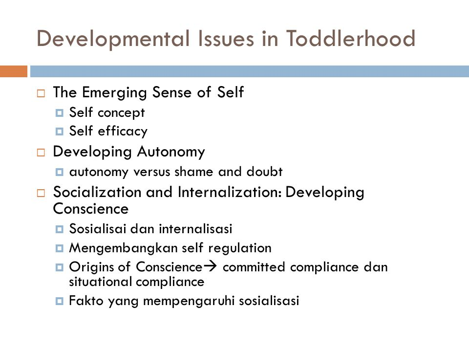 Developmental Issues in Toddlerhood