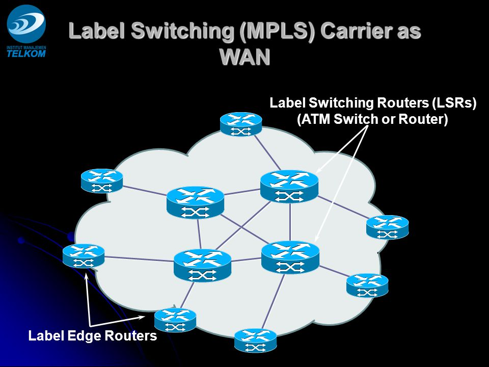 Label Switching (MPLS) Carrier as WAN