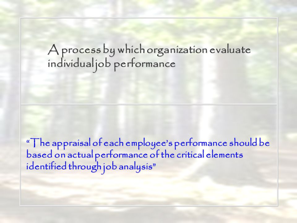 A process by which organization evaluate individual job performance