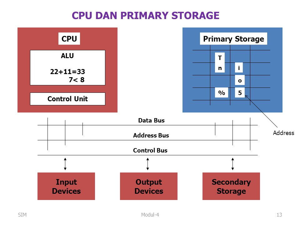 CPU DAN PRIMARY STORAGE