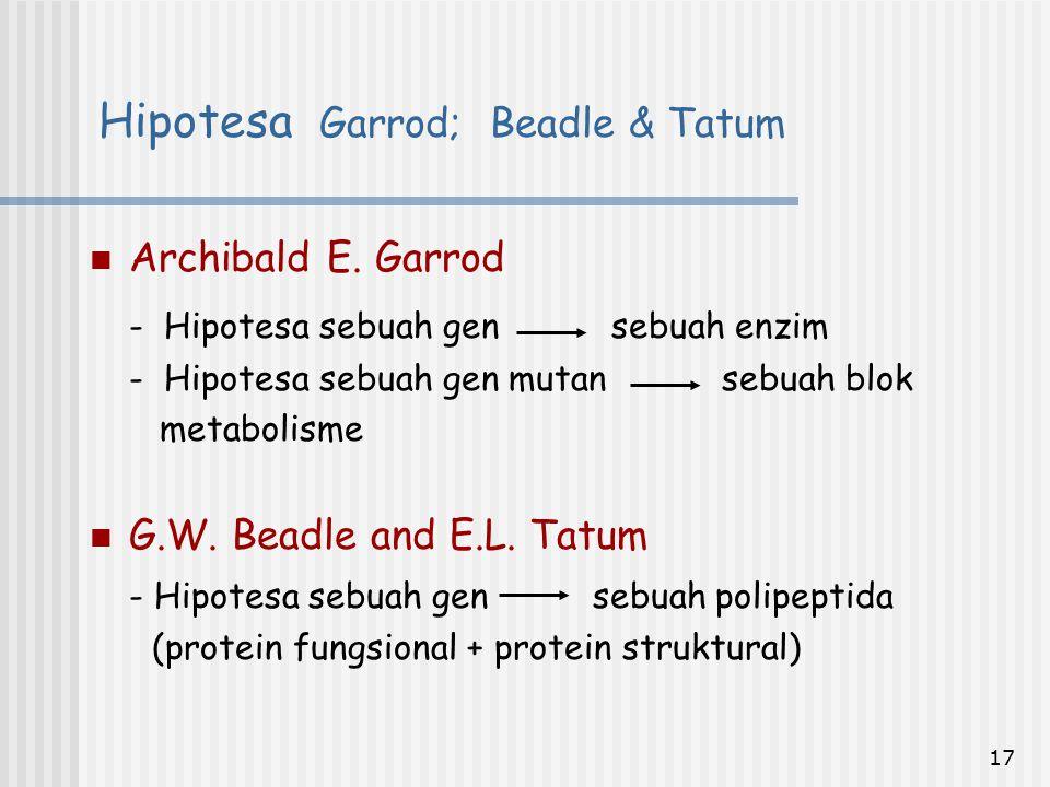 Hipotesa Garrod; Beadle & Tatum
