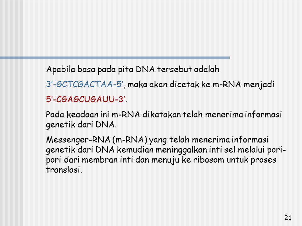 Apabila basa pada pita DNA tersebut adalah