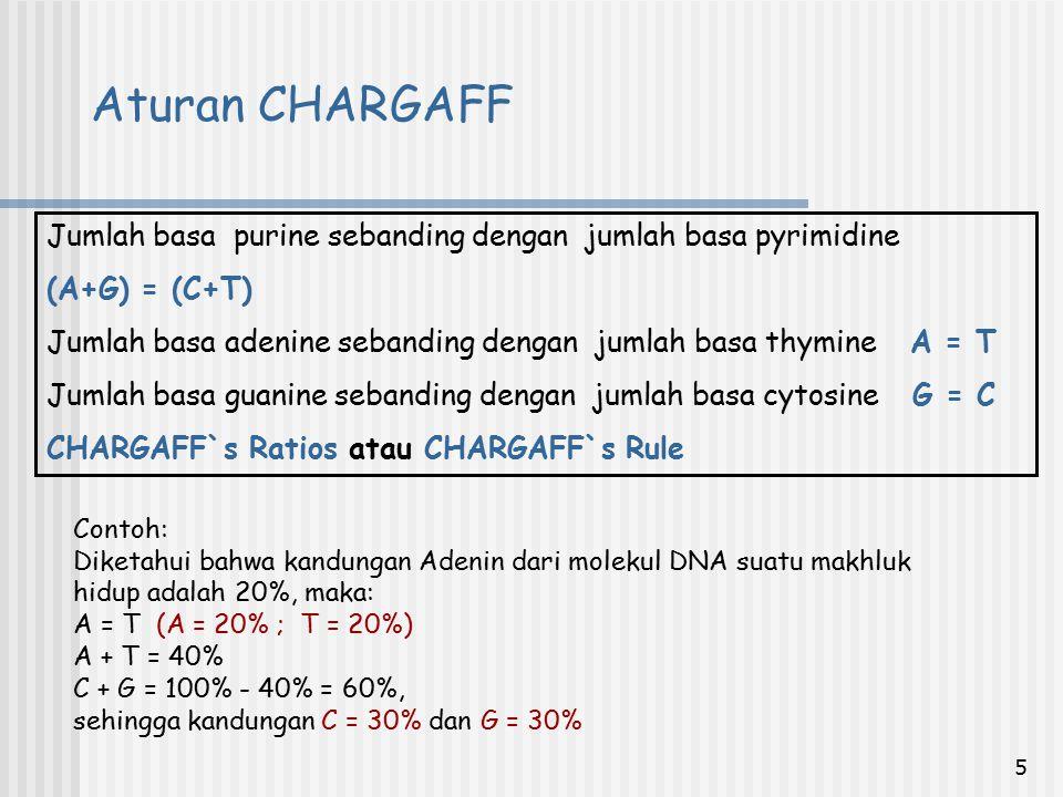 Aturan CHARGAFF Jumlah basa purine sebanding dengan jumlah basa pyrimidine. (A+G) = (C+T)