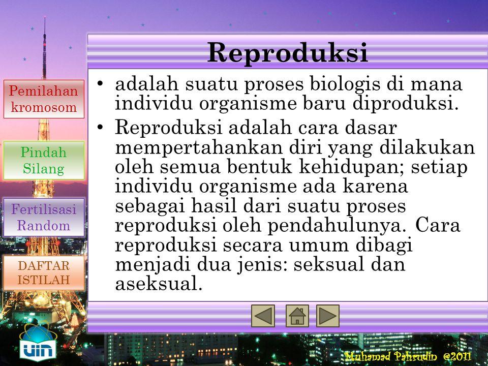 Reproduksi Reproduksi Seksual Penyebab Variasi Genetik