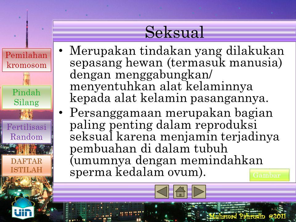Seksual Reproduksi Seksual Penyebab Variasi Genetik