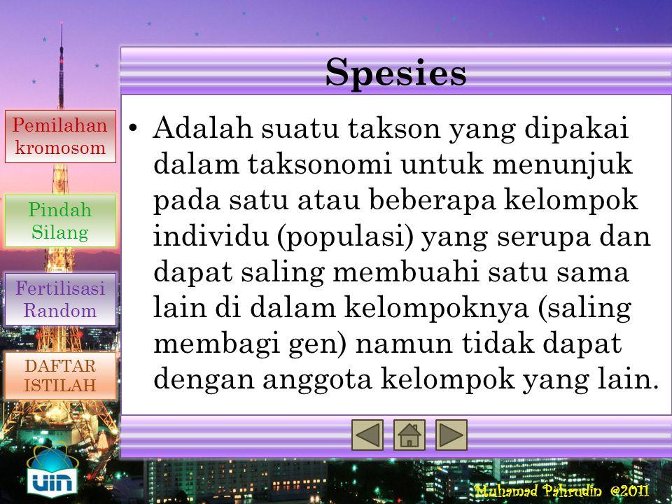 Spesies Reproduksi Seksual Penyebab Variasi Genetik