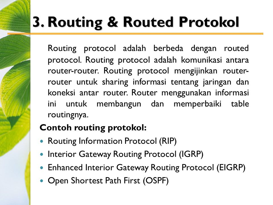 3. Routing & Routed Protokol