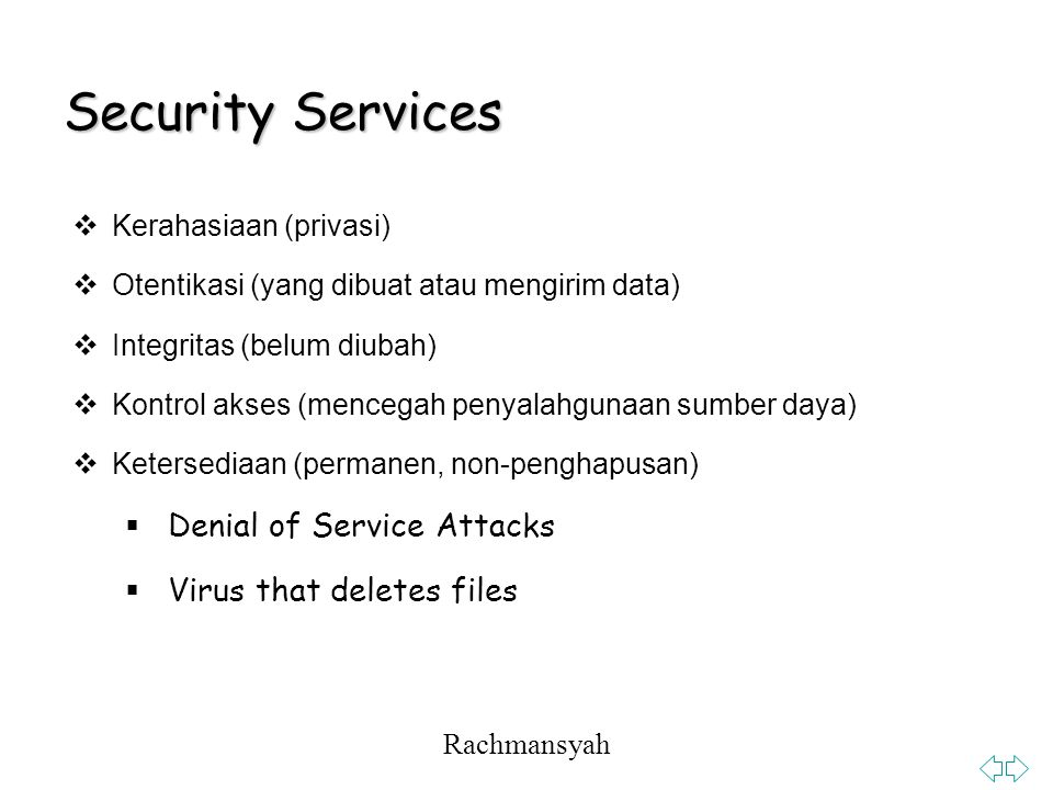 Security Services Denial of Service Attacks Virus that deletes files