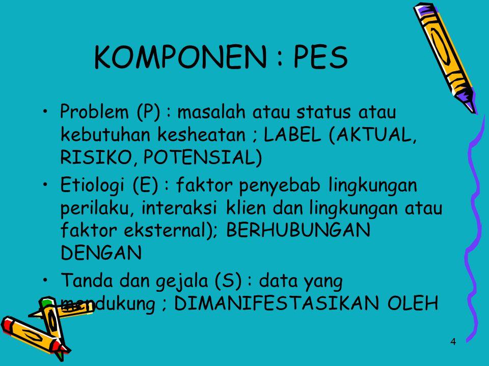 KOMPONEN : PES Problem (P) : masalah atau status atau kebutuhan kesheatan ; LABEL (AKTUAL, RISIKO, POTENSIAL)