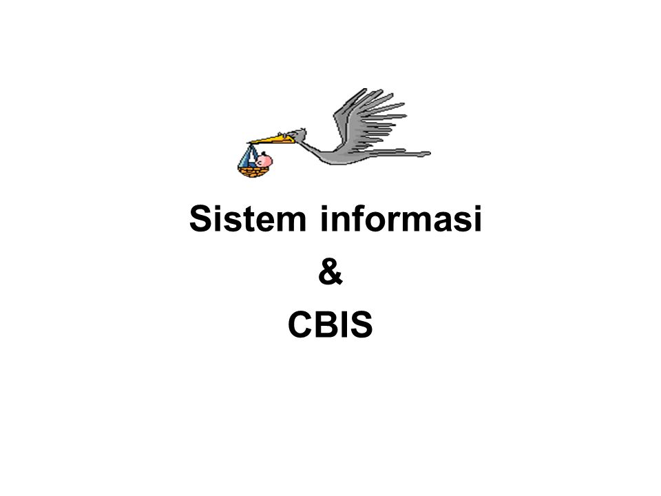 Sistem informasi & CBIS
