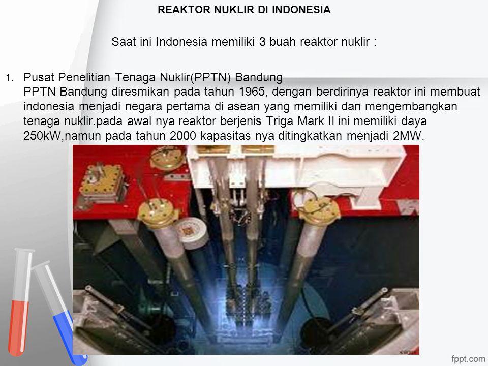 REAKTOR NUKLIR DI INDONESIA