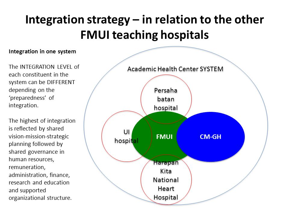 Integration strategy – in relation to the other FMUI teaching hospitals