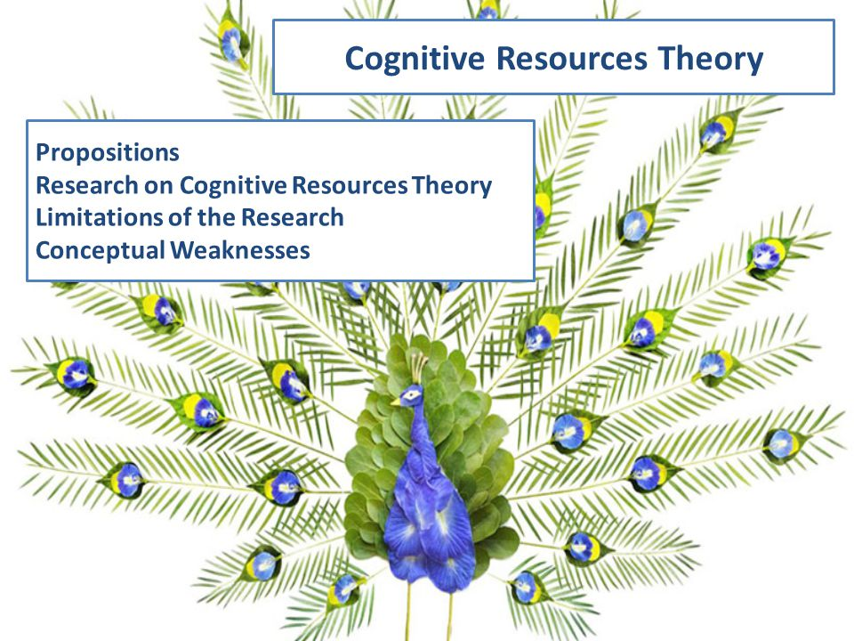 Cognitive Resources Theory