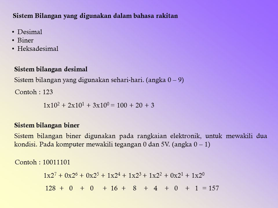 Sistem Bilangan yang digunakan dalam bahasa rakitan