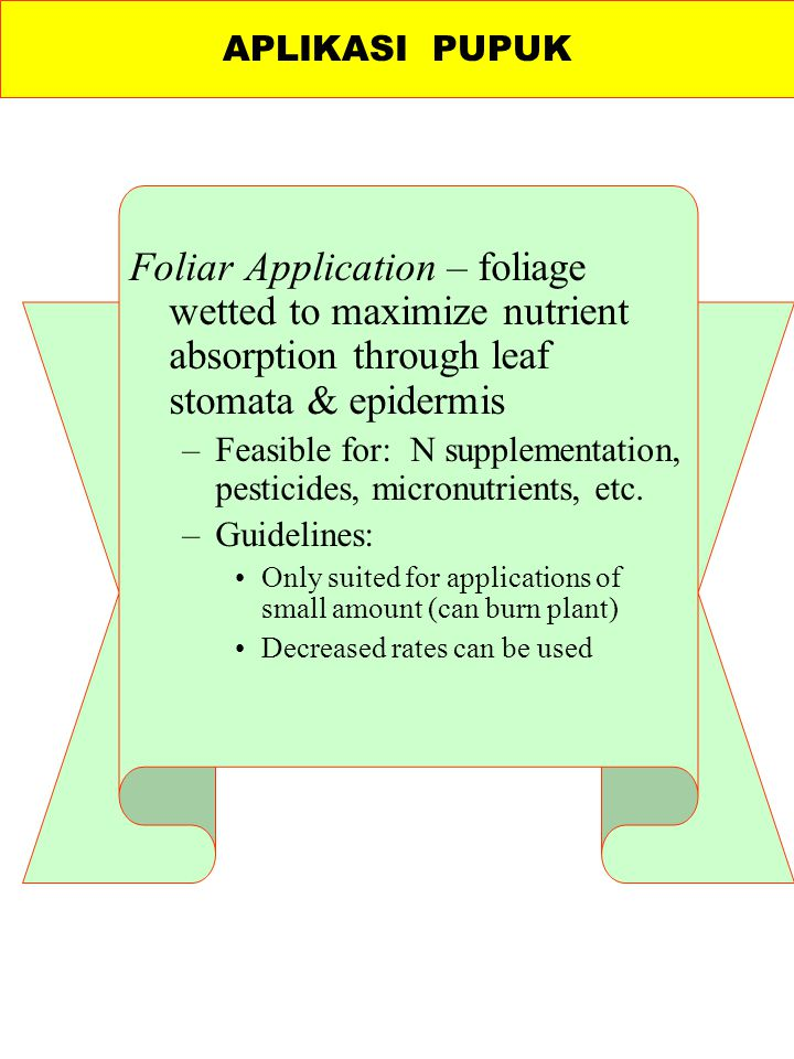 APLIKASI PUPUK Foliar Application – foliage wetted to maximize nutrient absorption through leaf stomata & epidermis.