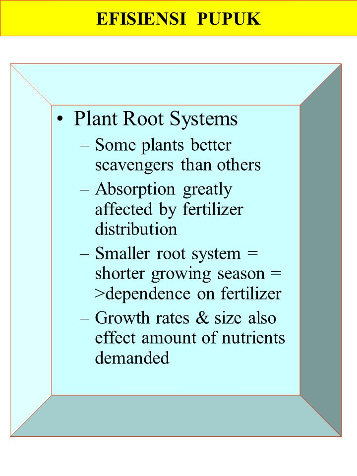 Plant Root Systems EFISIENSI PUPUK
