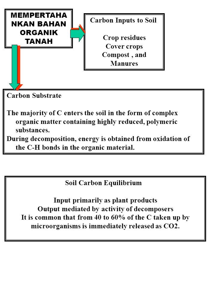 MEMPERTAHANKAN BAHAN ORGANIK TANAH Carbon Inputs to Soil Crop residues